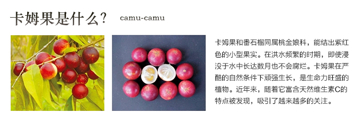 DHC卡姆活力晶亮系列_维生素C含量约为柠檬的37-56倍